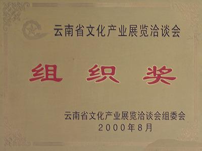 霓裳民族服饰:云南省文化产业展览洽谈会组织奖