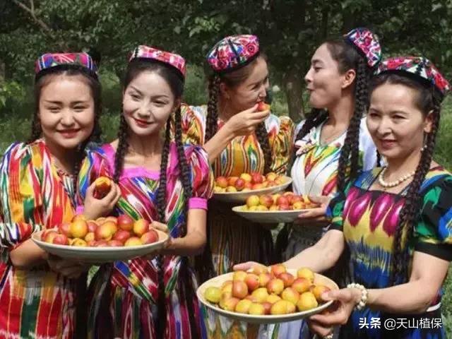 维吾尔族4