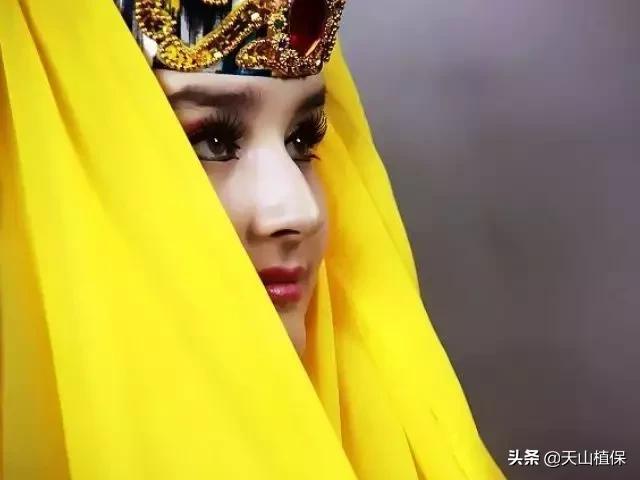 维吾尔族8